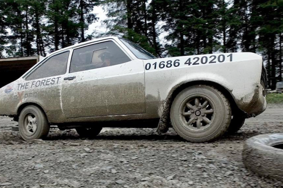 The Ultimate Forest Rally Experience image