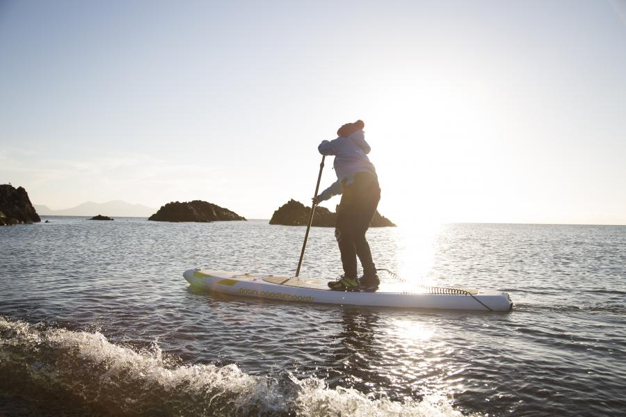 Stand Up Paddleboarding Mini Safari North Wales image